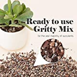 Bonsai Succulent and Cactus Soil - Jacks Gritty Mix #111 - Fast Draining – Fights Root Rot – Optimized pH