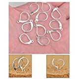 Dealglad 100PCS Silver Plated Copper French Earring Hook Lever Back Earwires Jewelry Findings