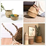 Yesland 2 Pack Woven Seagrass Plant Basket with