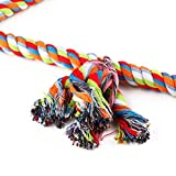 Wontee Bird Triangle Rope Swing Colorful Perch