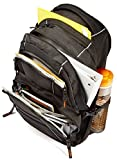 Amazon Basics Laptop Computer Backpack - Fits Up To