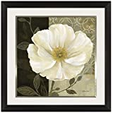 Pinnacle Frames and Accents Midnight Poppy, 24x24-Inch
