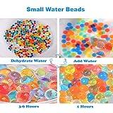 Leeche Non Toxic 300pcs Jumbo & 20000 Small Water