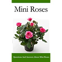 Mini Roses: Questions and Answers About Mini Roses
