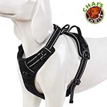 """Chai's Choice Pet Products 32""""-42"""" Best Front Range No-Pull Dog Harness, X-Large, Black"""