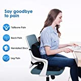 Coccyx Seat Cushion and Lumbar Support Pillow for