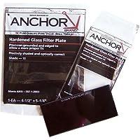 Anchor Brand FS-5H-10 4-1/2X5-1/4 #10 Glass Filter Plate