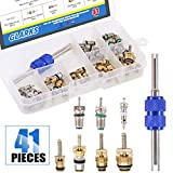 Glarks 41Pcs Car Air Conditioner Valve Core Schrader Valve Cores Accessories A/C R12 R134a Refrigeration Tire Valve Stem with Double Head Dual Dismantling Remover Installer Tool Assortment Kit