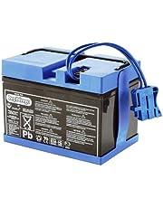 Peg Perego S.p.A Y/KB0036 - 12V Batterie 12Ah f. Fahrzeuge 12V