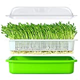 Seed Sprouter Tray Soil-Free BPA Free PP Healthy Wheatgrass Grower 13.4x9.84x4.72nch with Cover
