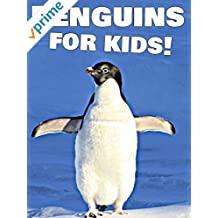 Penguins for Kids!