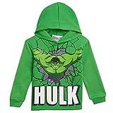 Marvel The Incredible Hulk Little Boys Hooded Pant