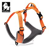 TRUE LOVE Dog Harness Outdoor Adventure II Reflective Vest 2 Leash Attachments Matching Leash Collar Available TLH6071 (Orange, XL: Chest 82-106cm/32.5-42in
