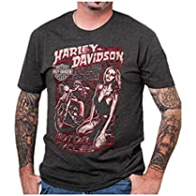 Harley-Davidson Men's Vintage Poster Crew Neck Short Sleeve T-Shirt, Charcoal
