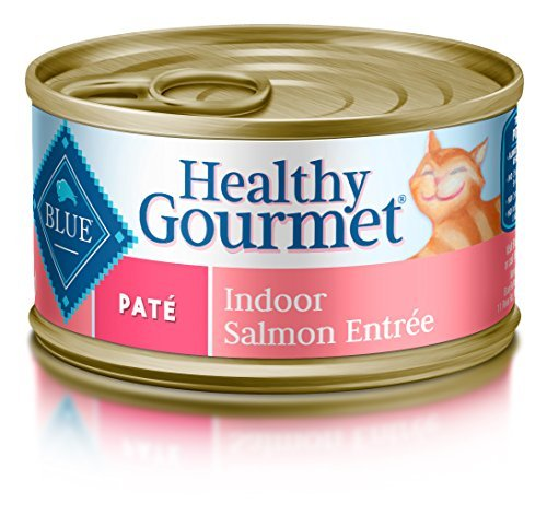 bluee Buffalo Pate Adult Indoor Salmon Entree Wet Cat Food, 3 oz Can, Pack of 24 by bluee Buffalo