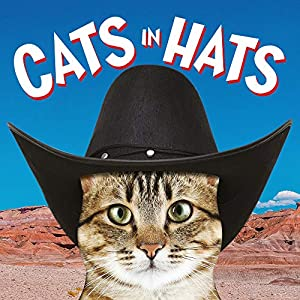 Cats-in-Hats-Board-book--7-Oct-2018