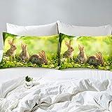 Erosebridal Kid Rabbit Sheet Set Cute Rabbit Fitted