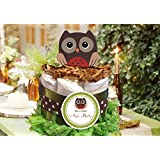 Forest Animal Woodland Wise OWL Baby Mini One Tiered...