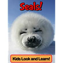 Seals! Learn About Seals and Enjoy Colorful Pictures - Look and Learn! (50+ Photos of Seals)