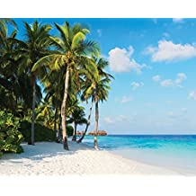 J.P. London uStrip Peel and Stick Mural MD4038PS Paradise Ocean Breeze and Palm Trees Beach Removable Full Wall Mural, 10.5-Feet by 8.5-Feet