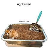 DuraScoop Jumbo Cat Litter Scoop, All Metal