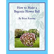 How to Make a Begonia Flower Ball: Making a Begonia Flower Ball