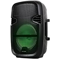 Audioverse Portable Speaker