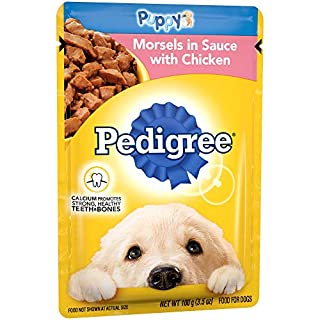 PEDIGREE CHOICE CUTS Morsels in Sauce Puppy Wet Dog Food with Chicken, (16) 3.5 oz. Pouches