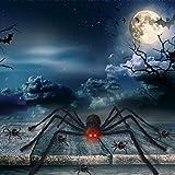 Begleri Halloween Decorations Giant Spider 4.1 ft