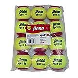 Penn QST 36 - Pelota de Tenis de Fieltro en Bolsa de Polietileno