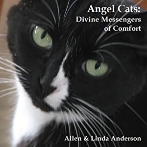 Angel Cats Audiobook