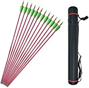 30Inch Archery Aluminum Arrows Target Practice Hunting Arrows Spine 500 with Removable Tips and Arrow Quiver f