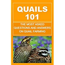 Quails 101: The Most Asked Questions And Answers On Quail Farming