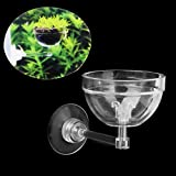 Transparent Aquatic Plant Pot Bowl Holder with Suction Cup for Aquarium Fish Tank Live Plants