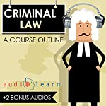Criminal Law AudioLearn: A Course Outline | Kurt R. Mattson