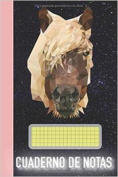 CUADERNO DE NOTAS: Cuaderno de caballos del polígono: Gran diario a cuadros - 120 páginas con diamantes para anotar notas en muchas ocasiones, ideas y ... los aficionados a los caballos en rústica