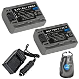 amsahr S-NPFP50-2CT Digital Replacement Battery Plus Travel Charger for Sony NP-FP50, NP-FP30 with Lens Accessories Pouch (Gray)