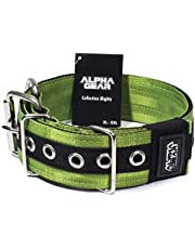 Dog Collar – Premium Nylon Dog Collar– Heavy-Duty Dog Collar – Flexible and Comfortable – Adjustable Dog Collarfor Large Dogs – Robust and Strong Construction – XL and XXL Sizes (Green, XL/2XL)