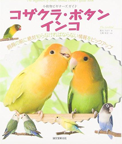 コザクラ・ボタンインコ―小動物ビギナーズガイド (SMALL ANIMAL POCKET BOOK SERIES) (Japanese) Tankobon Hardcover – 31 May 2011