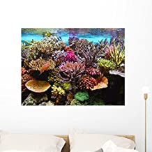 Corals Aquarium Wall Mural by Wallmonkeys Peel and Stick Graphic (36 in W x 27 in H) WM18341