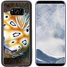 Luxlady Samsung Galaxy S8 Plus S8+ Aluminum Backplate Bumper Snap Case IMAGE ID: 20378927 Nudibranch Prachtsternschnecke Chromodoris leopardus
