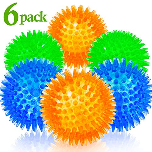 Squeaky Balls for Dogs