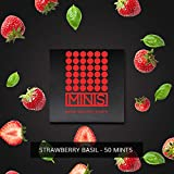 MINIS Hemp Mints - Strawberry Basil - 50 Mints