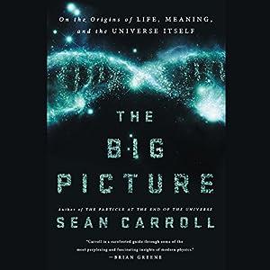 The Big Picture | Livre audio