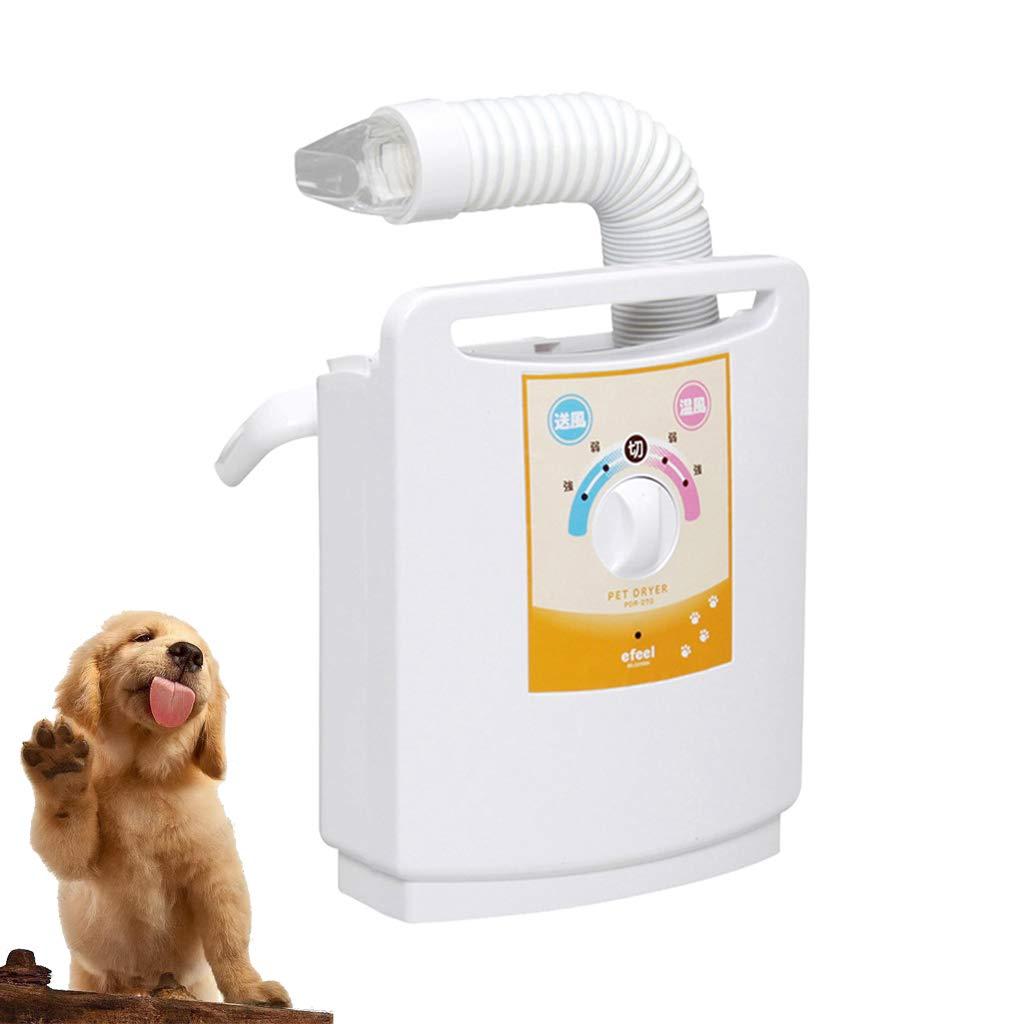 MAL Silent water blower, pet blow dryer, pet hair dryer, bluee cat dog