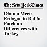Obama Meets Erdogan in Bid to Patch up Differences with Turkey | Mark Landler