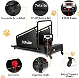 Goplus Dog Treadmill, Pet Running Machine for