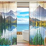 SEULIFE Window Sheer Curtain Tree Moutain Natural Landscape Voile Curtain Drapes for Door Kitchen Living Room Bedroom 55x84 inches 2 Panels