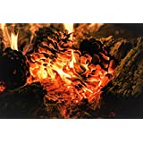 Raw Earth Colors Natural Fire Starter Pinecones for Fireplace, Wood Stove, Fire Pit, Campfire - Organic, Eco Friendly