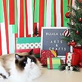 Christmas Red Green White Crepe Paper Streamer